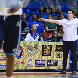 Pumaren building a nourishing nest for young, hungry Falcons