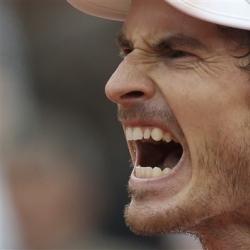 Injured Murray to miss Davis Cup quarterfinals