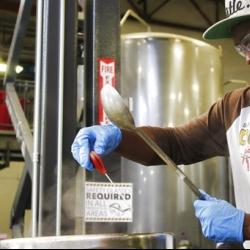 Tony Gwynn Jr. follows dad in brewing as well as baseball