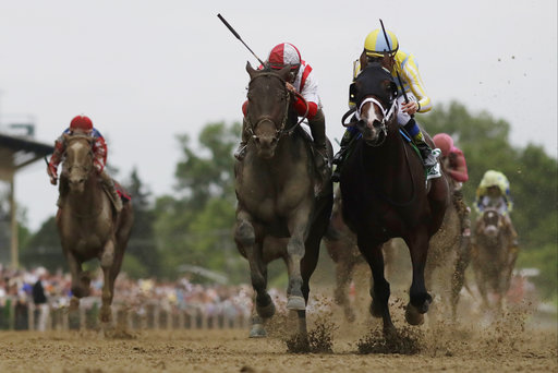 Preakness Stakes victor, payouts: Superfecta brings in huge money