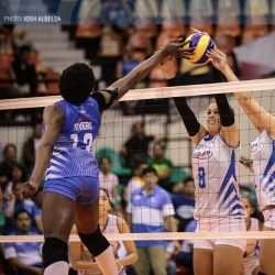 Lady Warriors out to complete PVL conquest