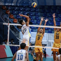 Volley Bolt out to complete elims sweep, clinch no. 1 seed