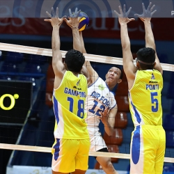NO SWEEP: Jet Spikers pounce on error-prone Volley Bolt