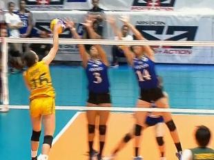 UAAP 79 Women's Volleyball: ADMU vs FEU Game Highlights