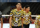 Tamaraws go streaking after goring Tigers in straight sets-thumbnail0