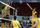 Tamaraws go streaking after goring Tigers in straight sets-thumbnail16