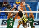 Tigers claw Green Spikers, inch closer to a semis berth -thumbnail41