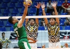 Tigers claw Green Spikers, inch closer to a semis berth -thumbnail59