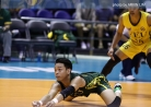 Tams clip Tigers in stepladder semis warmup   -thumbnail16