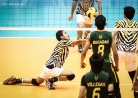 Tams survive first stepladder semis phase -thumbnail3