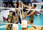 Tams survive first stepladder semis phase -thumbnail12