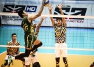 Tams survive first stepladder semis phase -thumbnail18