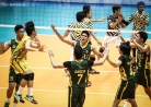 Tams survive first stepladder semis phase -thumbnail22
