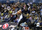 Hotshots dethrone Rain or Shine as Commissioner's Cup champs-thumbnail12